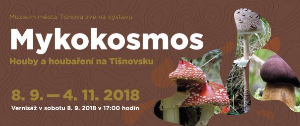 Mykokosmos